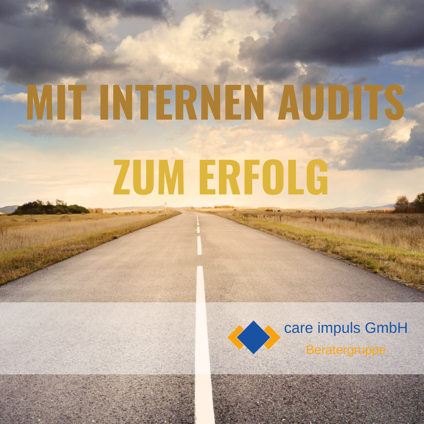 care impuls GmbH Interne Audits